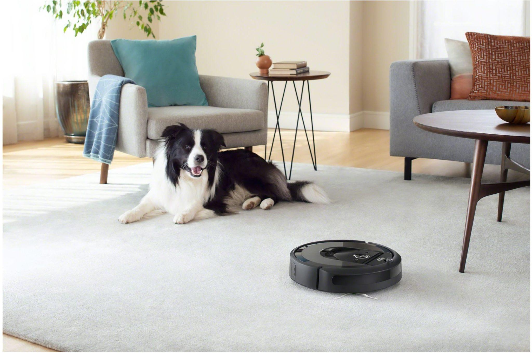 Najpopularniejsze roboty sprzątające - TOP 10 - iRobot Roomba i7 - pies